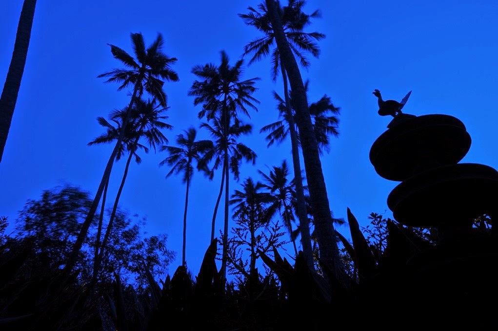 Earth Hour 28 March 2015 @ Reef Villa & Spa Sri Lanka